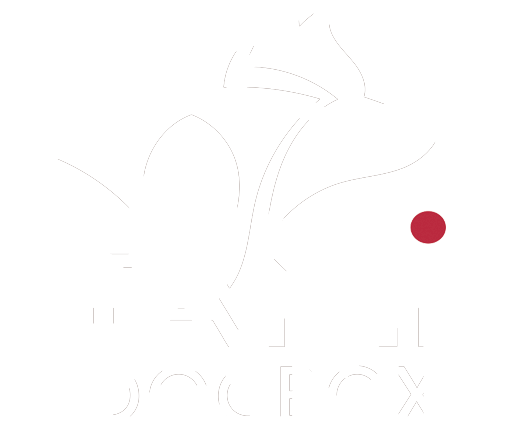 TAMI Inflatable Dogbox